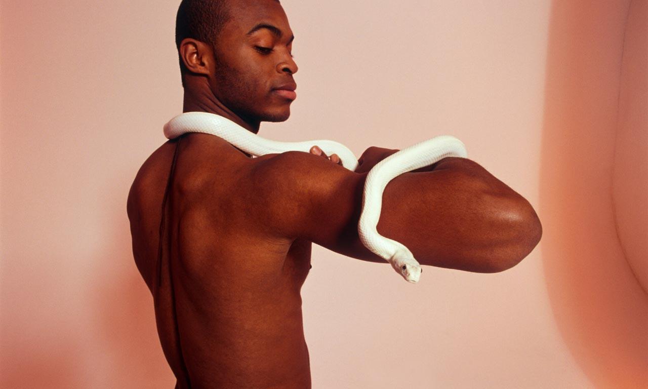 snakeaspet