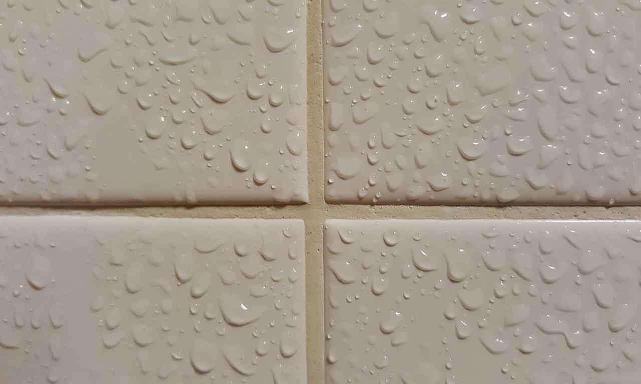 wet tiles real
